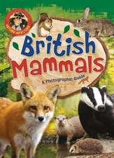 Nature Detective: British Mammals