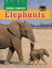 Animal Families: Elephants