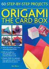 Origami:  60 Step-By-Step Projects