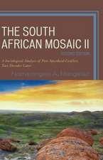 South African Mosaic II