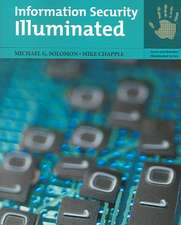 Information Security Illuminated