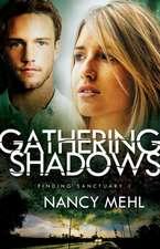 Gathering Shadows:  A 365-Day Devotional