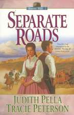 Separate Roads:  Exploring the Bible's Accuracy, Authority, and Authenticity