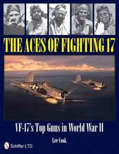ACES OF FIGHTING 17