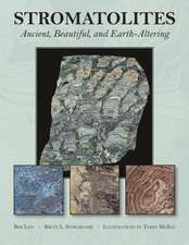 Stromatolites: Ancient, Beautiful, and Earth-Altering
