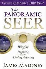 The Panoramic Seer