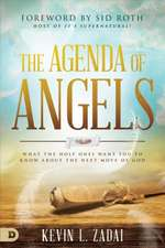The Agenda of Angels: What the Holy Ones Want You to Know about the Next Move