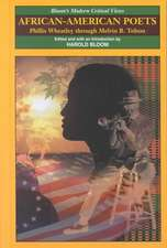 African-American Poets v. I