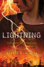 Lightning:  The Power of a Lot of Little Things Done Well