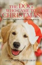Dog Who Came to Christmas