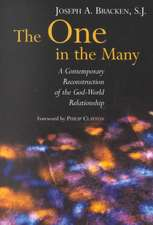 The One in the Many:  A Contemporary Reconstruction of the God-World Relationship