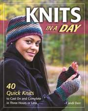 Knits in No Time: 40 Hats, Scarves, Fingerless Mittens & Other Accessories You Can Make in 2 Hours or Less