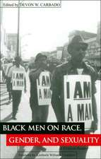 Black Men on Race, Gender, and Sexuality:  A Critical Reader