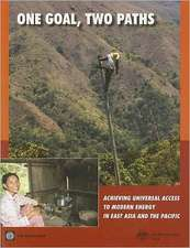 One Goal, Two Paths:  Achieving Universal Access to Modern Energy in East Asia and the Pacific