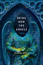 Bring Now the Angels: Poems