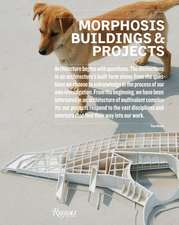 Morphosis Buildings & Projects:  1999-2008