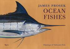 Ocean Fishes:  Paintings of Saltwater Fish
