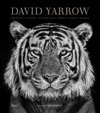 David Yarrow Photography