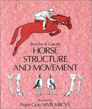 Horse Structure and Movement
