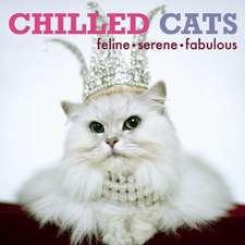 CHILLED CATS: Feline, Serene, Fabulous