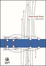 Visual Group Theory