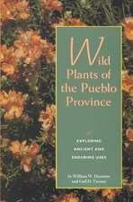 Wild Plants of the Pueblo Province:  Exploring Ancient and Enduring Uses