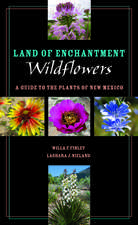 Land of Enchantment Wildflowers: A Guide to the Plants of New Mexico
