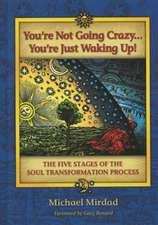 You're Not Going Crazy... You're Just Waking Up!:  The Five Stages of the Soul Transformation Process