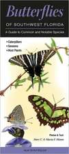 Butterflies of Southwest Florida:  A Guide to Common & Notable Species