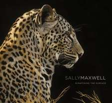 Sally Maxwell:  Scratching the Surface