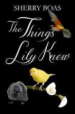 The Things Lily Knew:  Rosary Meditations for Moms