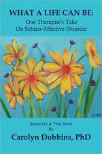 What a Life Can Be:  One Therapist's Take on Schizo-Affective Disorder.
