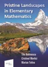 Andreescu, T:  Pristine Landscapes in Elementary Mathematics