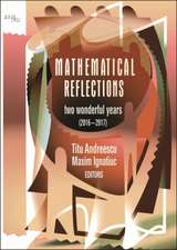 Mathematical Reflections: Two Wonderful Years (2016-2017)
