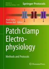 Patch Clamp Electrophysiology