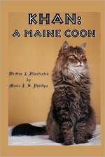 Khan:  A Maine Coon
