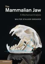 The Mammalian Jaw: A Mechanical Analysis