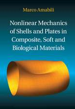 Nonlinear Mechanics of Shells and Plates