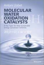 Molecular Water Oxidation Catalysis: A Key Topic for New Sustainable Energy Conversion Schemes