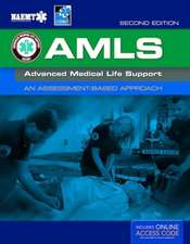 Amls:  An Assessment-Based Approach