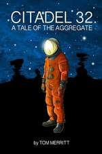 Citadel 32:  A Tale of the Aggregate