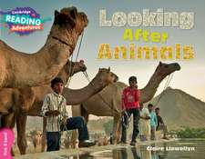 Looking After Animals Pink B Band
