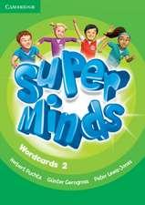 Super Minds Level 2 Wordcards (Pack of 90)