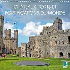 Châteaux forts et fortifications du monde (Calendrier mural 2018 300 × 300 mm Square)
