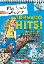 Tornado Hits!