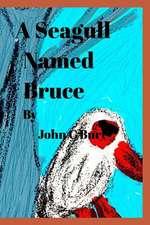 A Seagull Named Bruce.