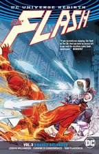 The Flash Vol. 3