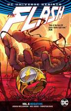 Flash Vol. 5 (Rebirth)