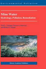 Mine Water: Hydrology, Pollution, Remediation