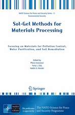 Sol-Gel Methods for Materials Processing: Focusing on Materials for Pollution Control, Water Purification, and Soil Remediation